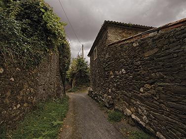 ptif_bt348-camino-entre-muros-de-pedra