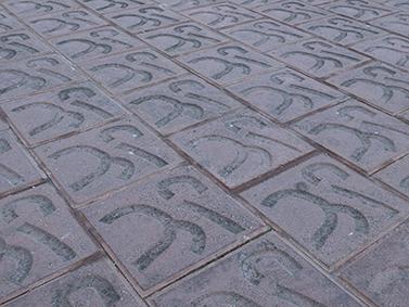 ptif_bt508-baldosa-cemento
