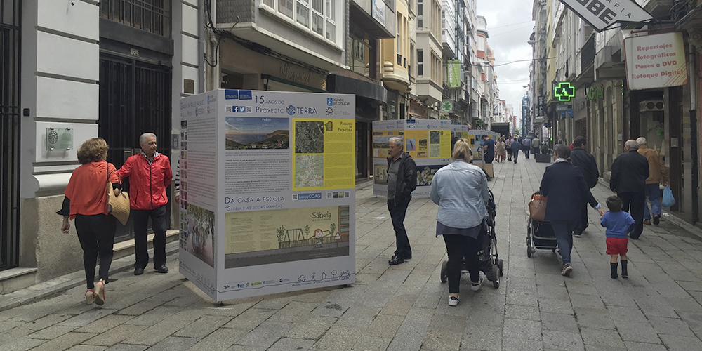 Ferrol Ro 01 RC