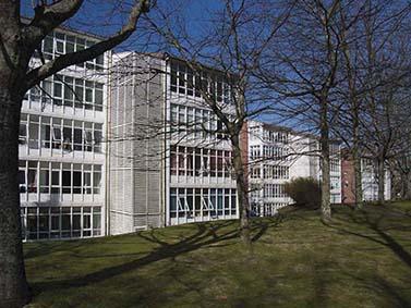 ptif_bt113-edificio-con-arbores