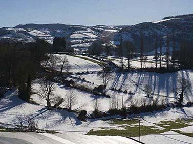 ptif_bt275-campos-nevados