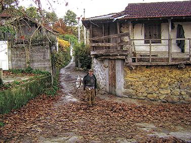 ptif_bt276-casa-e-camino-nunha-aldea